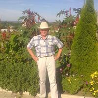 георгий, 63 года, Лев, Воронеж